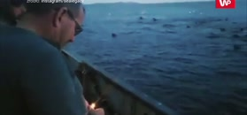 Petardą w lwy morskie. Nagranie rybaków