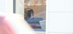 Olga Kalicka walczy w oknie kawiarni o idealne zdjęcie z dzieckiem