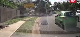 12-latek wybiegł na ulicę. Nagranie opublikowane ku przestrodze