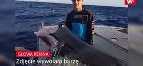 Zdjęcie rekina wywołało burzę. Lawina komentarzy ekspertów
