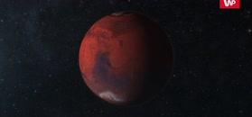 Sensacja na Marsie. Eksperci: to nie może być przypadek