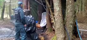 Akcja służb w lesie na Podlasiu.
