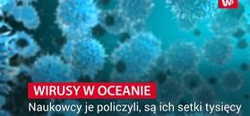 Odkryli 200 tys. wirusów w oceanicznych głębinach