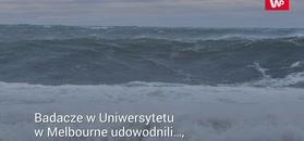 Wielkie fale na oceanie