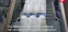 Hormony w mleku. Sprawdź ich wpływ na zdrowie