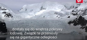 Radioaktywne lodowce