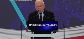 Jarosław Kaczyński wskazuje obrońców pedofilów: to PO i jej sojusznicy