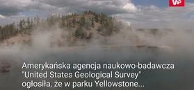 Nowy obszar termiczny. Sensacja w parku Yellowstone