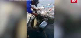 Wypłynęli na ryby. Gdy zobaczyli go w wodzie, musieli zareagować