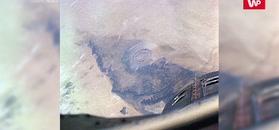 Zagadkowe oko Sahary