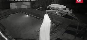 Nocna kąpiel w basenie. Para migiem wyskoczyła z wody