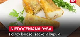 Niedoceniana ryba. Polacy bardzo rzadko ją kupują